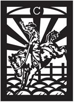Rodeo Street Banner