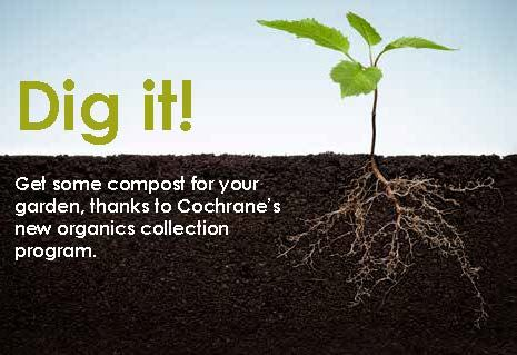 Compost Event for FB