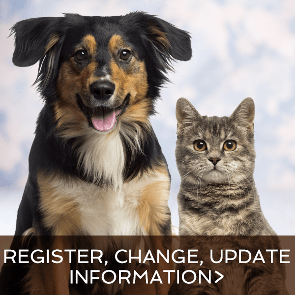 Animal Services | Cochrane, AB - Official Website