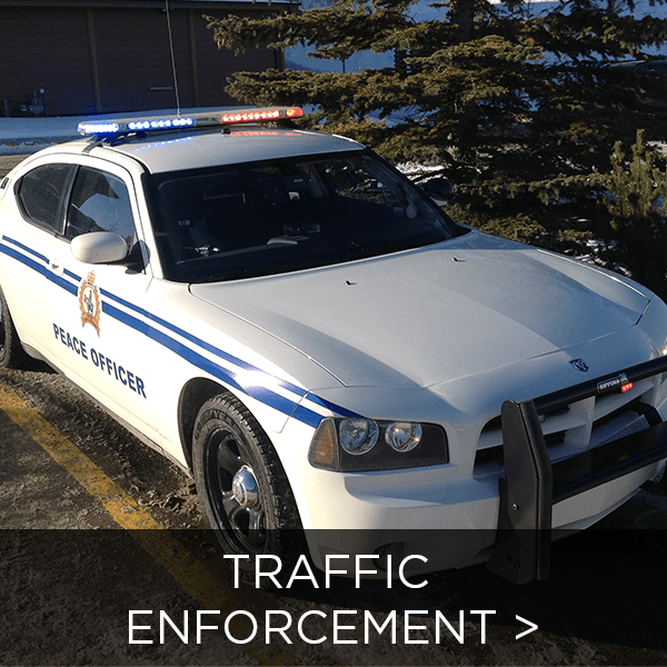 Traffic Enforcement Image Link